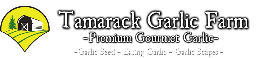Tamarack Garlic Farm - Garlic Seed and Gourmet Eating Garlic